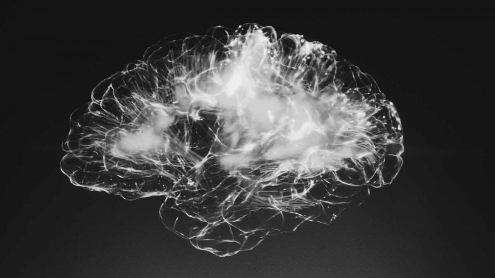 Kuvituskuva, jossa aivot